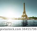 white swan and Eiffel tower, Paris. France 36455796