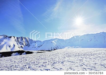 Morning sun shining Murododaira 36456784