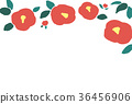camellia japanese flower 36456906