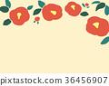 camellia japanese flower 36456907