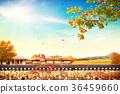 Autumn theme - Light effects, graphic design 005 36459660