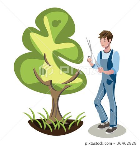 Gardener s man is cutting a bush. 36462929