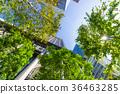 辦公區和綠色的高層建築 36463285