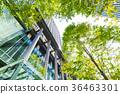 辦公區和綠色的高層建築 36463301