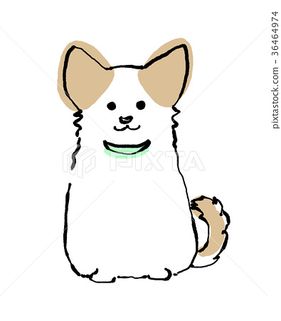 Chihuahua dog (with collar) hand drawn illustration 36464974