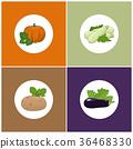 南瓜 绿皮西葫芦 土豆 36468330