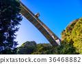 สะพาน,ต้นเมเปิล,ท้องฟ้าเป็นสีฟ้า 36468882