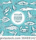 vector, food, seafood 36469142