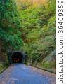 [시즈오카 현] 구 아마 기 터널 카와 측 36469359
