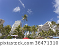 夏威夷 威基基海灘 瓦胡島 36471310