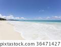 하와이, 바다, 리조트 36471427