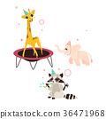 vector flat animals party set isolated 36471968