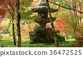 autumn at Eikando Temple.  36472525