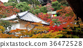 Eikando Temple at radiance of autumn colors.  36472528