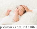 嬰兒 寶寶 寶貝 36473863