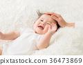 嬰兒 寶寶 寶貝 36473869