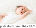 嬰兒 寶寶 寶貝 36473871