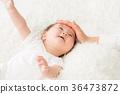 嬰兒 寶寶 寶貝 36473872