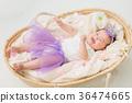 嬰兒 寶寶 寶貝 36474665