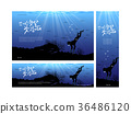 llustrations of banners of Jeju in summer,easy to edit with your own background scenery,color,or picture behind 36486120