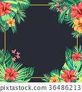 Tropical plant vector design 001 36486213