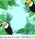Tropical plant vector design 006 36486229