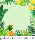 Tropical plant vector design 008 36486231