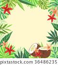 Tropical plant vector design 009 36486235