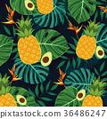 Tropical plant vector design 010 36486247