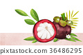 fruit and plant design, expressive of summer 011 36486295