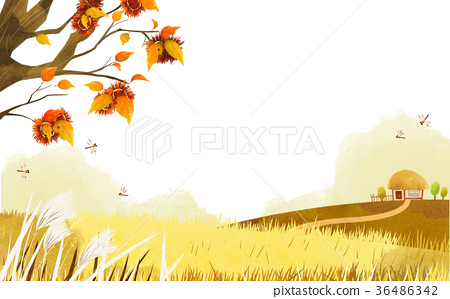 Frame in autumn - a maple leaf, hanbok, traditional wrapping cloth 004 36486342