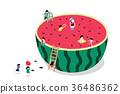 Cool Summer 001 36486362