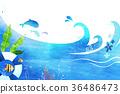 undersea world 006 36486473