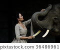 Portrait art of beautiful women and elephants 36486961