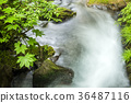 river, water, water current 36487116