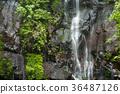 spring water, water, spring 36487126