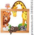 Wooden frame with wild animals 36489161