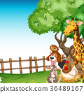 Background scene with farm animals in the field 36489167