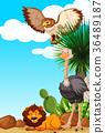 Three types of animals in the desert field 36489187