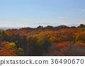 狭山丘陵 육도 산 가을 36490670