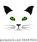 Cat silhouette with green eyes 36497650