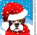 santa claus french bulldog 36497815