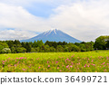 Fuji mountain with blue sky. 36499721