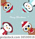 christmas penguin owl 36500016
