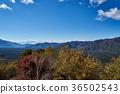从Koyodai天文台的秋天Aokigahara Jukai和Honjo湖 36502543