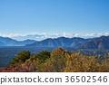 从Koyodai天文台的秋天Aokigahara Jukai和Honjo湖 36502546
