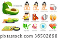 benefits of avocado. Body care with best fruits.  36502898