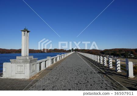 Sayama Lake Embankment(堤防) 36507911