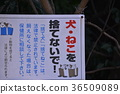 sign, signboard, signs 36509089