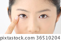 年輕女人的眼睛 36510204